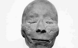 Thutmose I mummy head